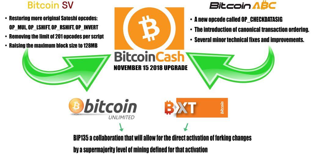Bitcoin Cash vs Bitcoin SV differenze