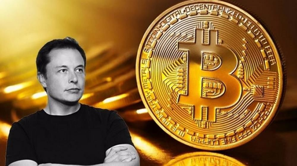 Elon Musk: il Bitcoin [BTC] è brillante, migliore dei contanti -  Criptovalute24