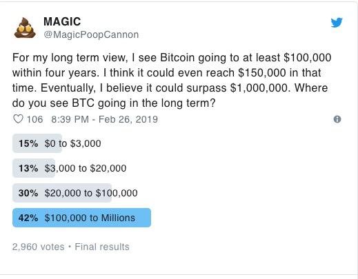 Sondaggio Prezzo Bitcoin MagicPoopCannon