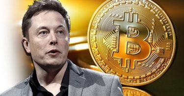 Elon Musk pronto ad investire nelle Criptovalute?