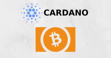 cardano sale bitcoin cash scende