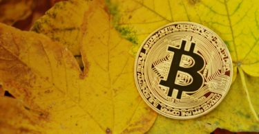 Grandi possessori Bitcoin