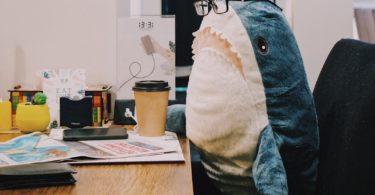baby shark il nuovo token che salva gli oceani